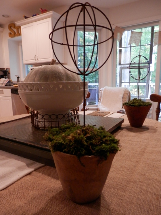 pots with moss and topiaries