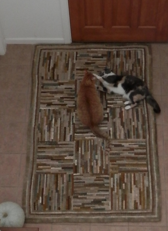 """this is my rug, lilly."" ~ otis"
