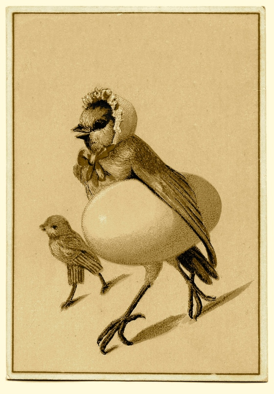 birdmom-graphicsfairy008b